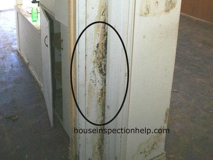 Door Trim And Wall Mold