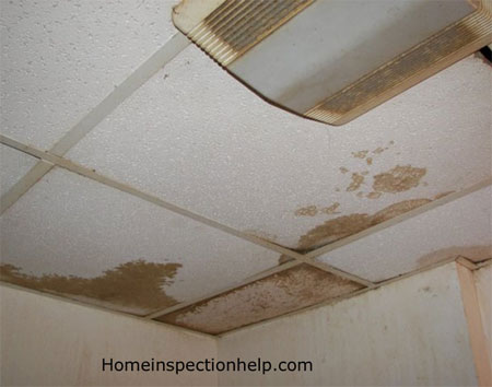 Water Damaged Ceiling Panels