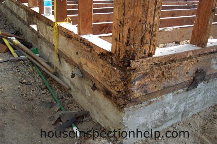 Wood Framing Termite Damage