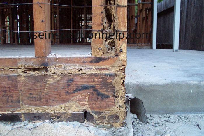 Concrete Porch Termite Damage