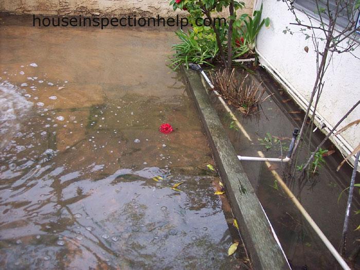 Backyard Flooded
